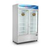 Tủ đông đứng 700 lít Alaska IFC-100G2 công suất 1100W